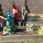 "Gadsden City Schools students in the ""Beautiful Rainbow Catering Company and Garden"" program lean about organic gardening."
